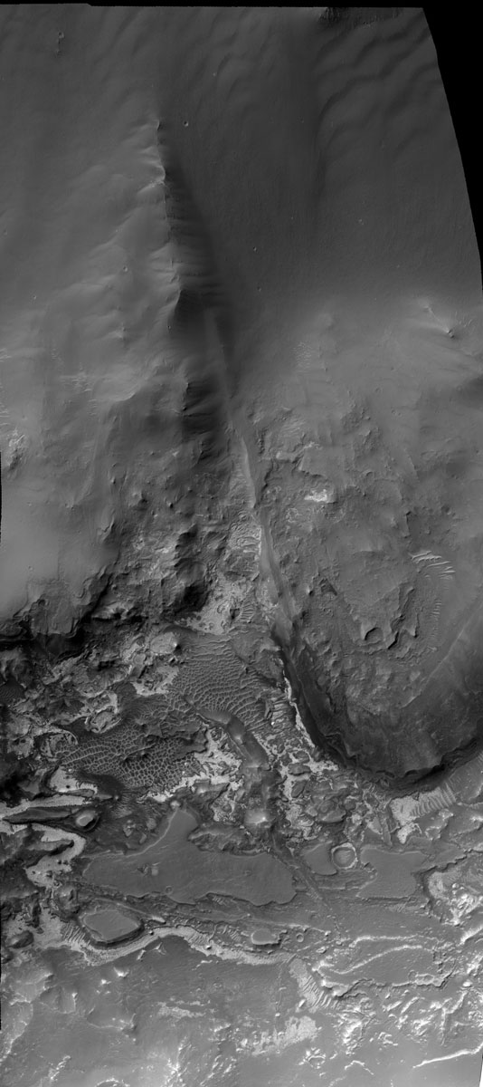 Light-Toned Layering in Noctis Region Pit